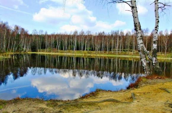 Vlčí jezero na podzim